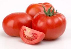 tomato টমেটো