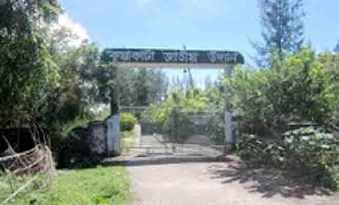 জঙ্গল আর নর্দমায় কুয়াকাটার 'ইকোপার্ক'