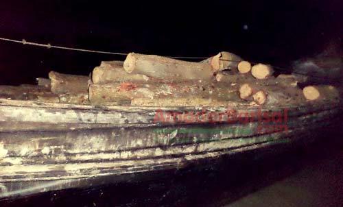 bhola-kewra-wood ভোলায় কেওড়া কাঠসহ দুই ট্রলার জব্দ