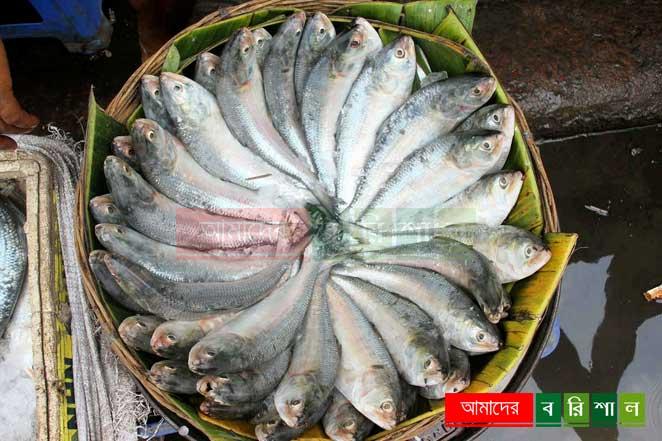 ঝালকাঠিতে ৩২০ মেট্রিক টন মাছ বেশি উৎপাদন