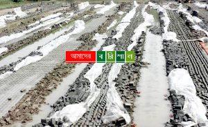 বৃষ্টিতে আমতলী-তালতলীতে দেড় কোটি টাকার ইটে ক্ষতি
