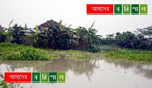 বাবুগঞ্জের নিন্মাঞ্চল প্লাবিত