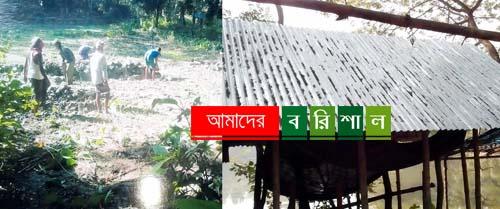 গৌরনদীতে সরকারি জমি দখলের অভিযোগ