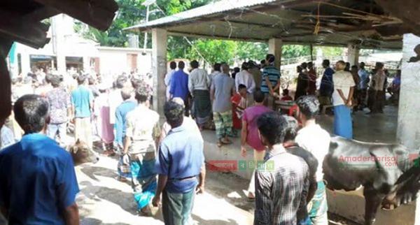 কাঁঠালিয়ায় সালিশ বৈঠকে মেম্বরের নির্দেশে কাঁঠালিয়ায় ছয় গরু ব্যবসায়ীকে মারধর